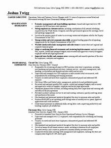 Self Employment Resume Store Manager Resume Sample Government Accountability