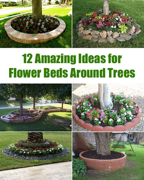 amazing ideas  flower beds  trees