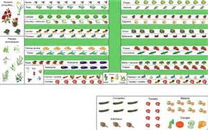 Plan Jardin Potager Bio by Lili Jardine Plan Et Contenu De Son Premier Potager