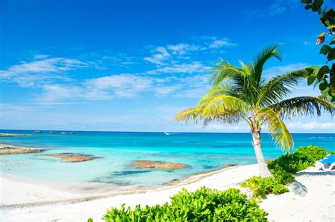 Bahamas And Florida Archives Northrop Johnson Yacht Charters