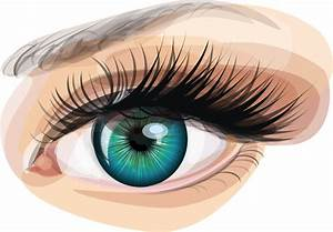 Vector realistic eye free vector download (1,814 Free ...
