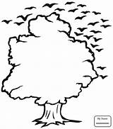 Outline Tree Coloring Oak Trees Birds Outlines Clip Clipart Pages Drawing Fall Leaf Cliparts Simple Shape Leaves Bird Printable Clipartbest sketch template