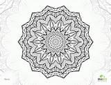 Coloring Complex Adults Mandala Colouring Printable Alyssa Interesting Adult Mandalas Popular 11th sketch template
