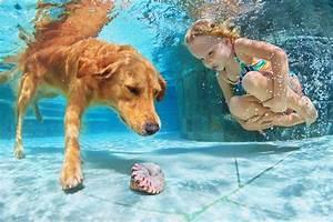 Photo Little girls Dogs Underwater world Pools Children