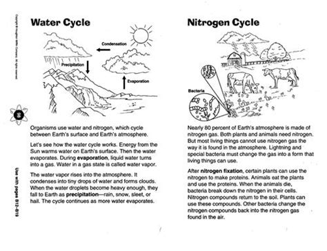 zola  science chapter  diagram   water cycle