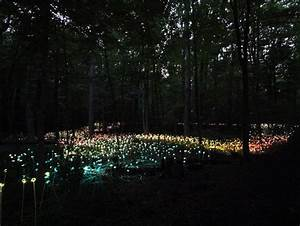 Rever De Jardin : il est temps de vous faire r ver un jardin illumin comme vous n en avez jamais vu bruce ~ Carolinahurricanesstore.com Idées de Décoration