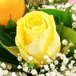 Gelbe Rose Bedeutung : blumenversand mit pr chtigen rosen rosenstr u en und rosent pfen blumenversand ~ Whattoseeinmadrid.com Haus und Dekorationen