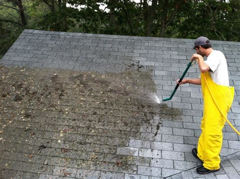 average typical cost to clean a roof