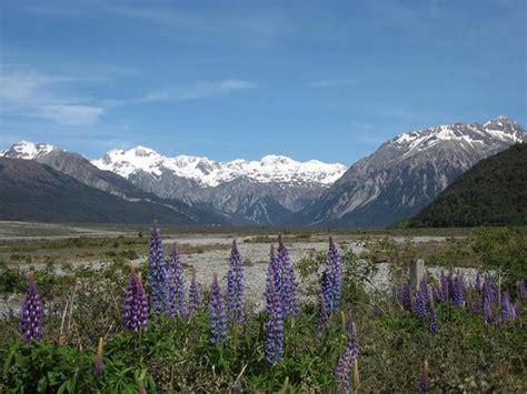 zealand mountain range photo