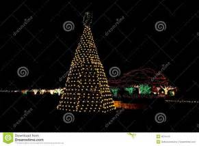 outdoor christmas tree lights stock photo image 3874416