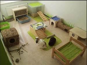 aire de jeux pour lapin espace vie lapin pinterest With jeux de maison a construire et a decore
