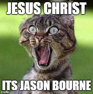 Jesus Cat Meme - shocked cat imgflip