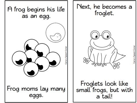 Cycle Of A Frog Coloring Page 43 Frog Cycle Coloring Page Frog Cycle Coloring