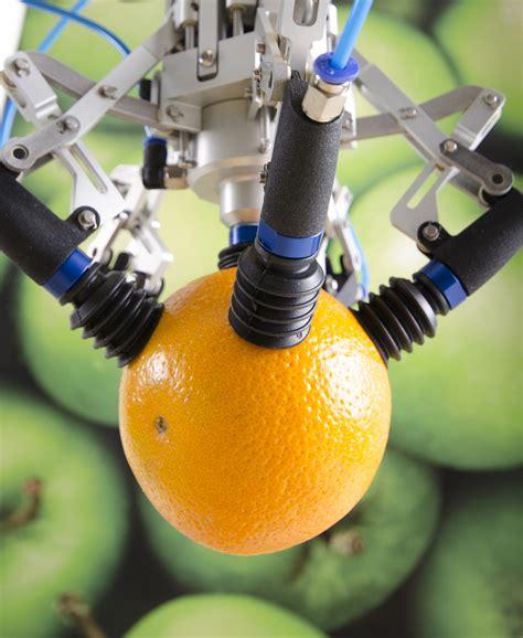 fruit picking robot solves automation challenge