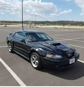 02 GT - MustangForums.com
