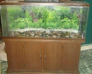 Aquarium schrank schaffen sie eine exotische atmosph re for Aquarium mit schrank