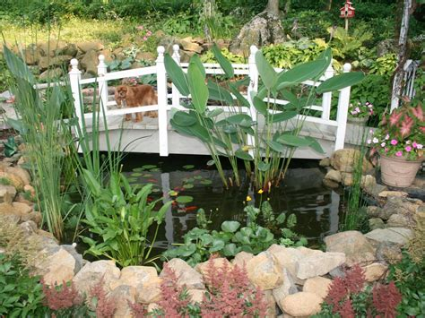 perfect place   pond landscaping ideas