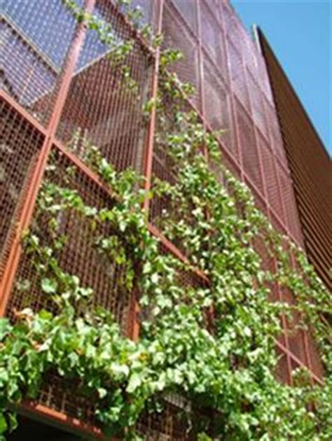 go green with eco mesh 174 on pinterest trellis mesh and