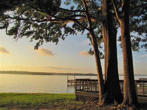 Lake livingston is a paradise for avid bass chasers, simply because it's home to a wide range of species including largemouth, smallmouth, striped, and white bass. Bass Fishing Around Houston, Texas | Best Casting Spots ...