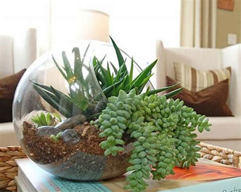flower side table 25 indoor and outdoor succulent gardens of all sizes