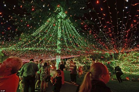 holiday lights and movie sites family claim guinness world record for christmas light