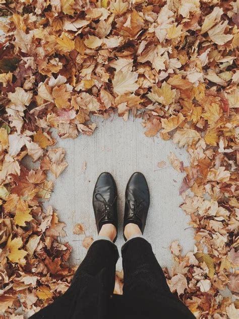 aesthetics atpaintmyfeels twitter autumn fall