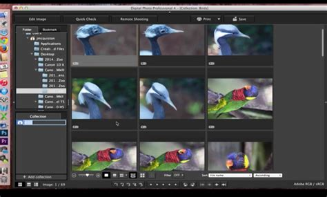 Canon Digital Photo Professional (dpp) 4 Managing Files