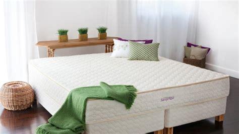Die Besten Mittel Gegen Milben Im Bett  Bild Der Frau