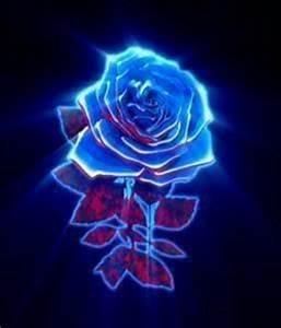 Witch blue rose do you like best Poll Results Nicki was