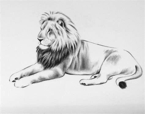 Large Charcoal Lion Sketch 18x 24 Lion Art