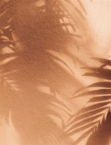 aesthetic light brown wallpapers