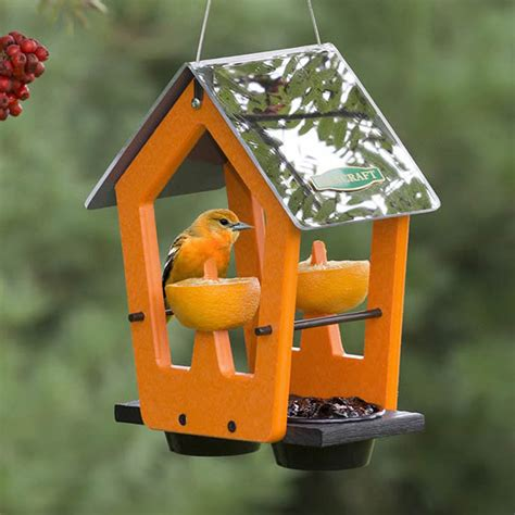 duncraft com reflections fruit jelly feeder