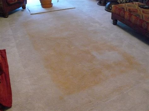 linoleum flooring yellowing professional carpet cleaning blog