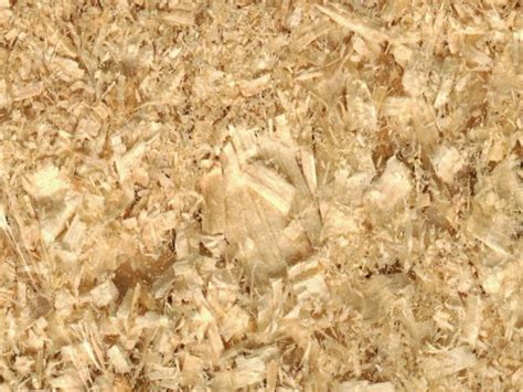 Pine Bedding For Rabbits by The Pros Cons Of Different Litter Bedding Types