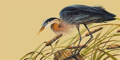 Handmade Set Of 2 Prints Of Blue Heron And White Egret By