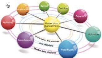 Master Data Management Process