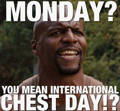 Bodybuilding Meme - 102 best images about gym humor on pinterest cheat day bodybuilding memes and fitness humor