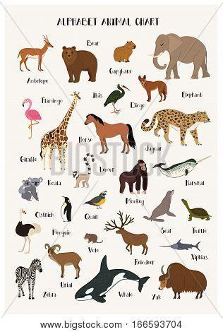 alphabet animals vector photo  trial bigstock