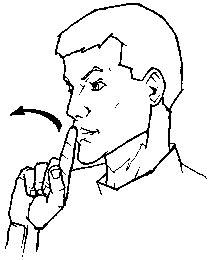 quot true quot american sign language asl