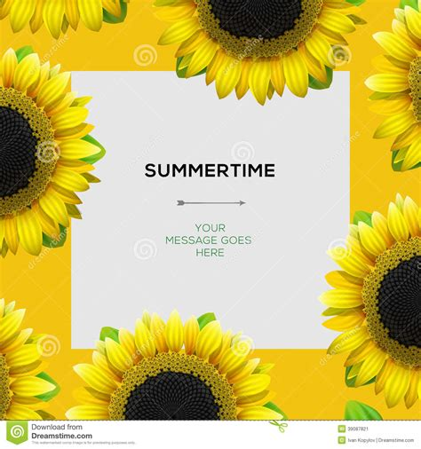 summertime template  sunflowers background stock