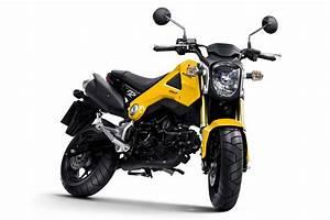 Honda Moto Marseille : moto honda msx 125 moto neuve marseille king moto king moto ~ Melissatoandfro.com Idées de Décoration