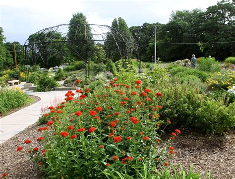 Garden City Centennials by Tri City Garden Club Celebrates 100 Years Home And