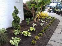 small trees for landscaping Nice Small Evergreen Trees For Landscaping | Landscape ...