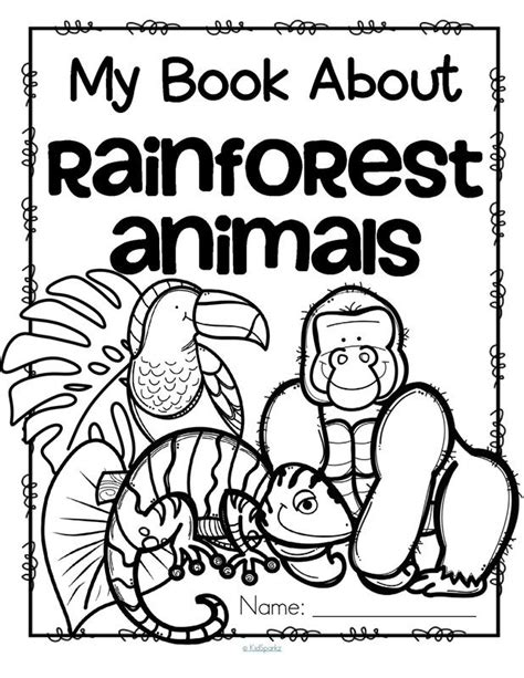 best 25 rainforest preschool ideas on