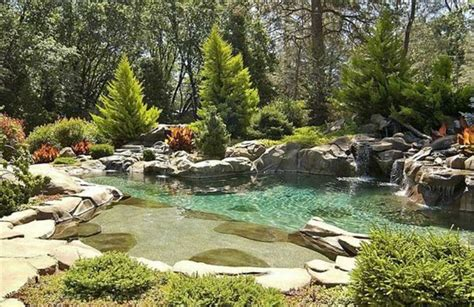Natural Looking Swimming Pools With Awesome Design Home