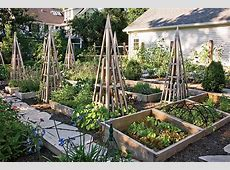 How to Plant a Vegetable Garden in Your Backyard Chicago