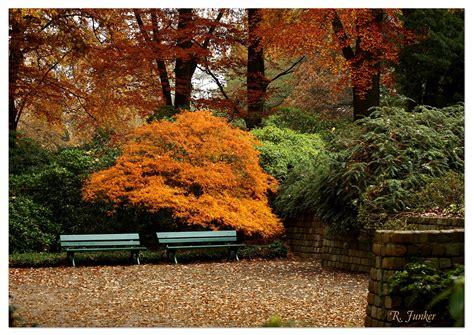 Garten Im Herbst by Botanischer Garten Bremen Im Herbst 1 Foto Bild