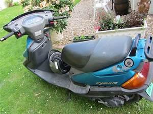 Scooter Yamaha Occasion : annonce scooter yamaha cygnus x occasion de 2000 28 eure et loir coulombs ~ Maxctalentgroup.com Avis de Voitures