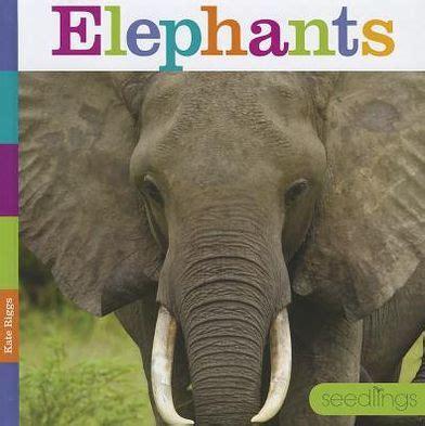 elephants seedlings series animals  kate riggs