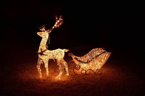 led outdoor reindeer 25 outdoor decoration ideas in pictures